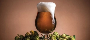 Kreiraj svoje kraft pivo!
